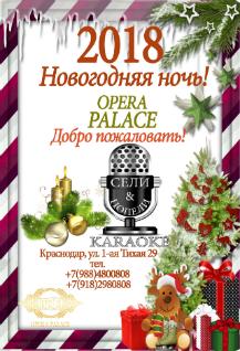 Новогодняя ночь в ресторане Opera Palace