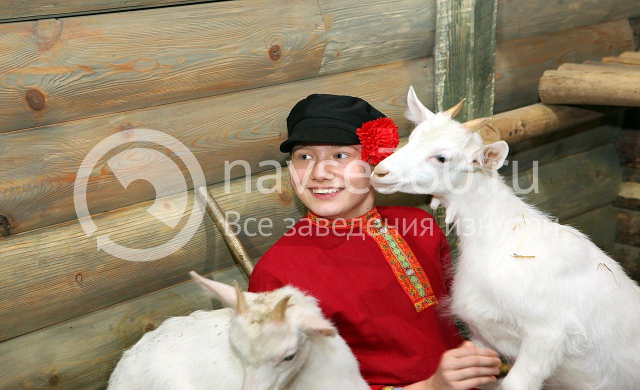 рога и копыта,контактный зоопарк