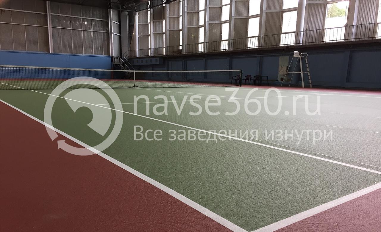 твердый корт,зенит, центр развития детского спорта, академия тарпищева, большой, настольный теннис, красногорск