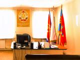 Всероссийское добровольное пожарное общество, общественная организация