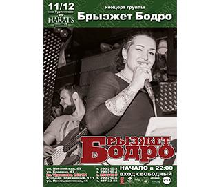 """концерт группы """"Брызжет Бодро"""""""