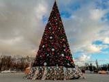 Новогодняя елка на площади Ленина