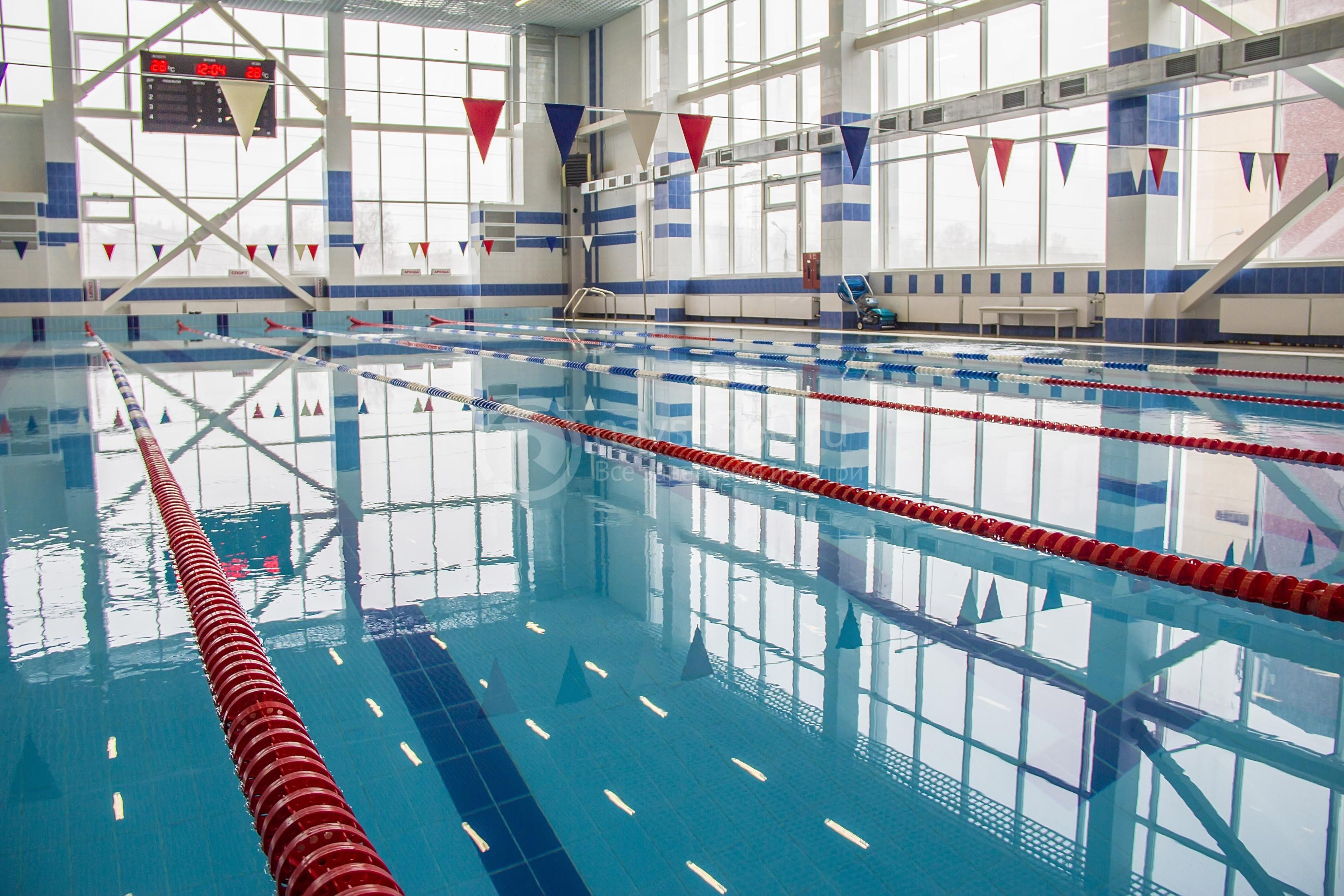 бассейн спартак чебоксары официальный сайт